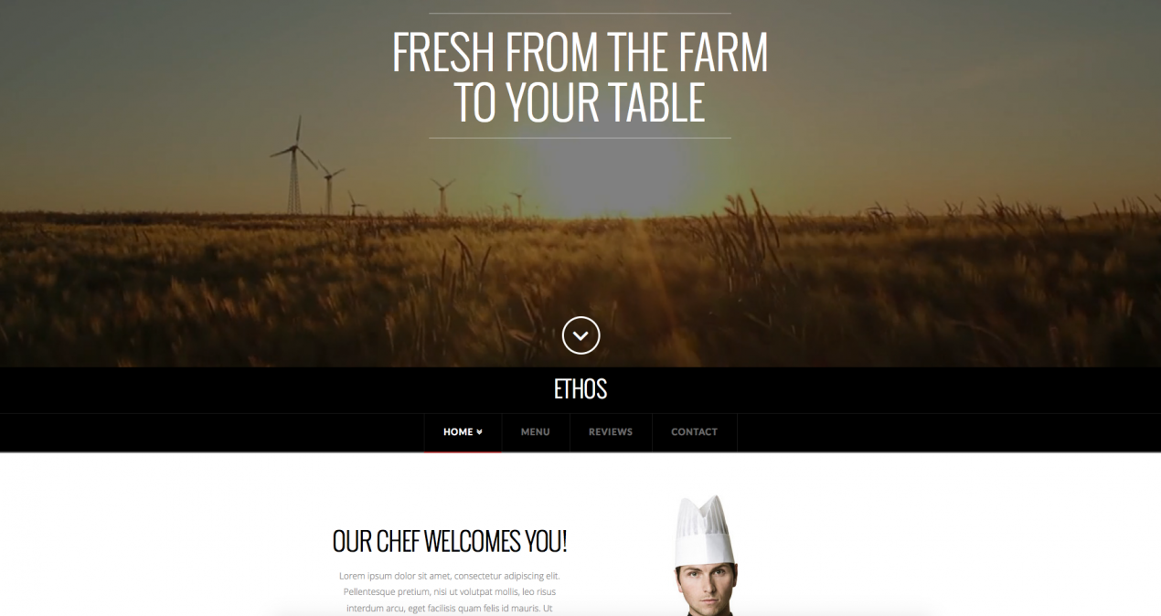 Ethos 3 - x-theme - ezbizbuilder-Ultimate Template